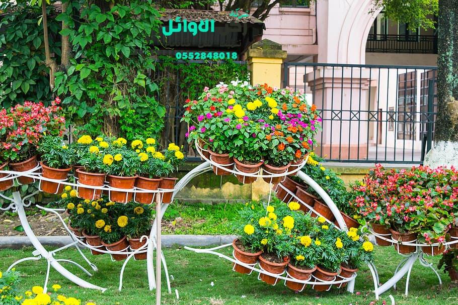 مهندس تصميم حدائق بالمدينة المنورة