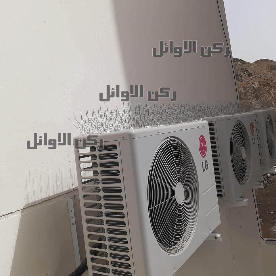 شركة تركيب طارد الحمام بالمدينة المنورة
